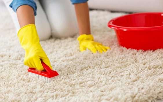 Чистые ковры в доме без усилий