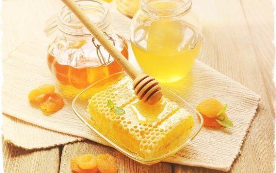 Польза медовой воды натощак