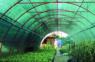 Лучшая и прочная сетка затеняющая для комфорта и укрытия от солнца – агромагазин «Agrolavka.com.ua»